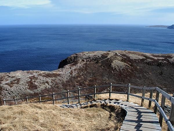 Newfoundland-Discovery-3.jpg