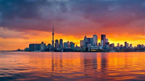 TorontoSkylineNight_web.jpg