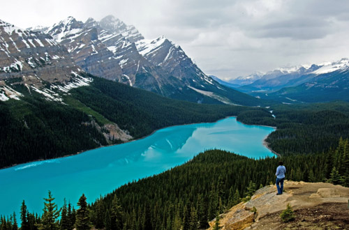 banff-peyto-lake.jpg