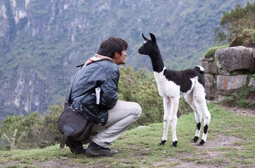 peru-man-n-goat.jpg